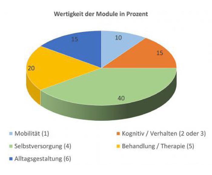 Diagramm zur Pflegereform - Wertigkeit der Module