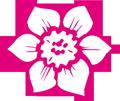 Bild eine lila Blüte
